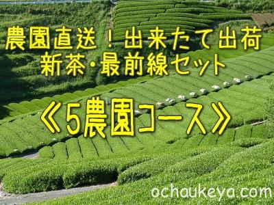 2013新茶最前線セット5農園