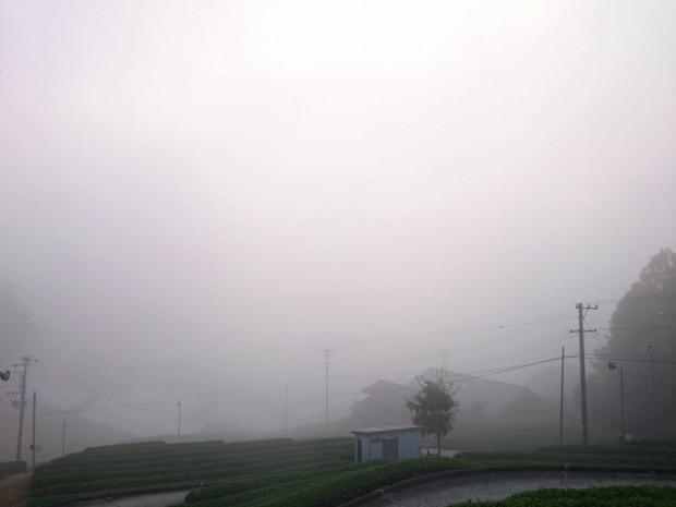 白川景色霧